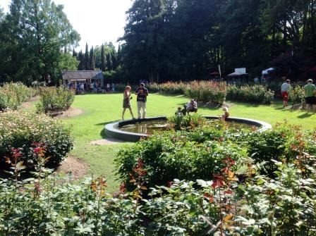 Carolina music festivals groove in the garden for Raleigh little theater rose garden